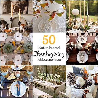 50-nature-inspired-thanksgiving-tablescape-ideas
