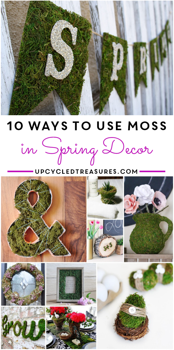 10-ways-to-use-moss-in-spring-decor-upcycledtreasures