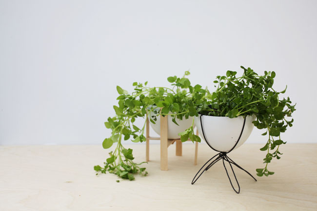 Upcycled Mini Planters | Brave New Home