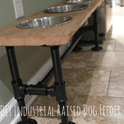industrial-dog-feeder
