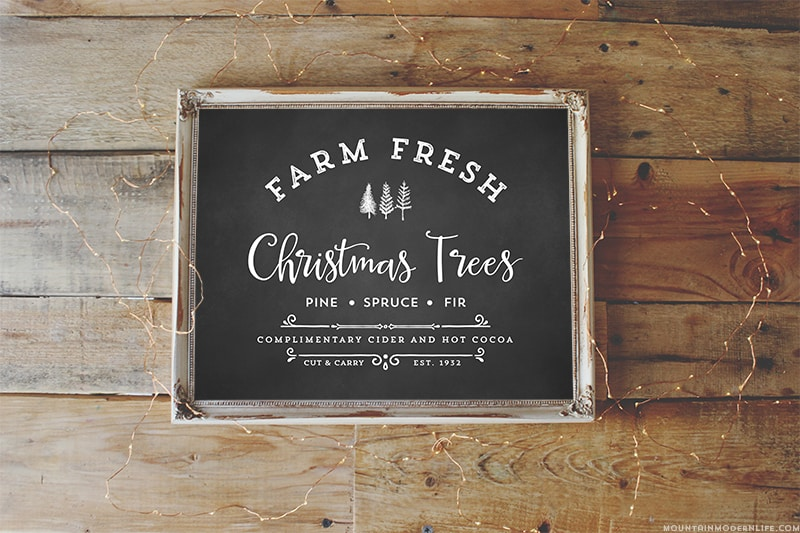 Farm Fresh Christmas Trees Digital Print ...