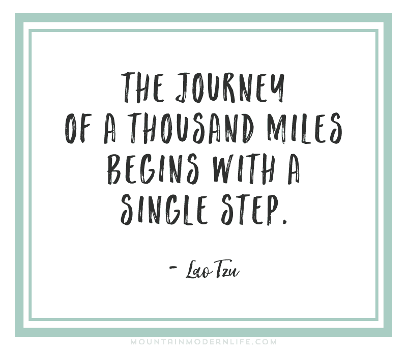 The Journey of a Thousand Miles Begins with a Single Step - Lao Tzu