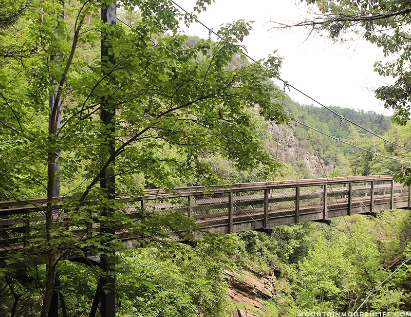 Looking to get out and explore North Georgia? Look no further than Tallulah Gorge State Park, it's one of the largest gorges on the East Coast! MountainModernLife.com