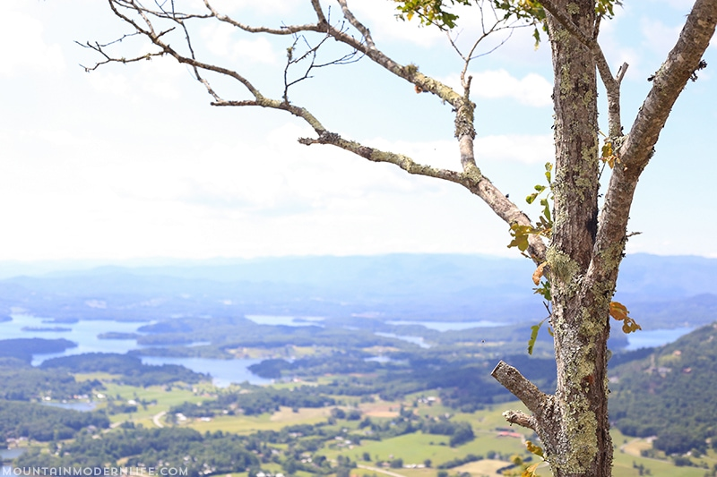 Are you in or around Hiawassee, GA? You should take a quick trip up to Bell Mountain, you can drive all the way up and see amazing views of Lake Chatuge. | Mountainmodernlife.com