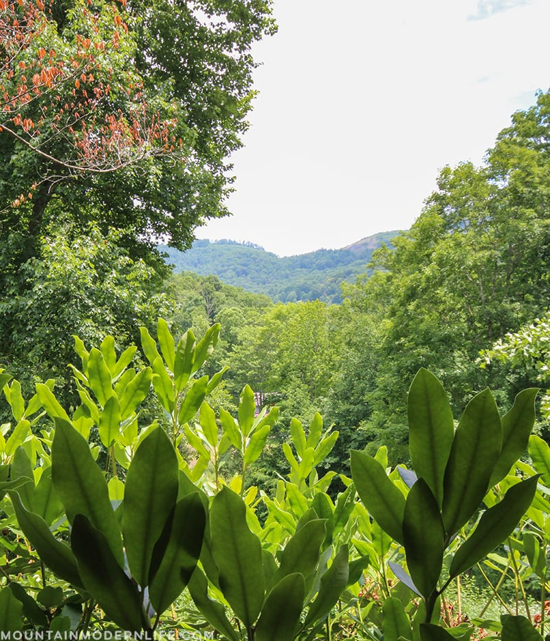 Looking for a majestic North Carolina Mountain Getaway for your destination wedding or next vacation? Check out Memory Mountain at Wolf Laurel! MountainModernLife.com