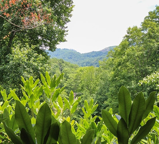 North carolina mountain getaway for Wolf laurel