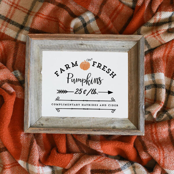 Plaid Blanket with Farm Fresh Pumpkins Print in Rustic Frame