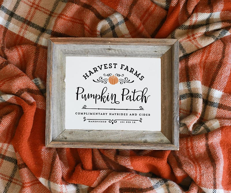 Instantly download this Harvest Farms Pumpkin Patch Printable, to spruce up your walls during the holidays!