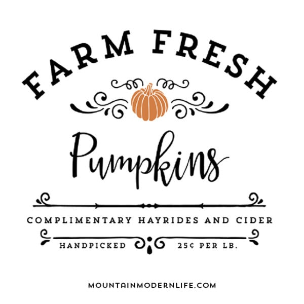 Farm Fresh Pumpkins SVG File | MountainModernLife.com
