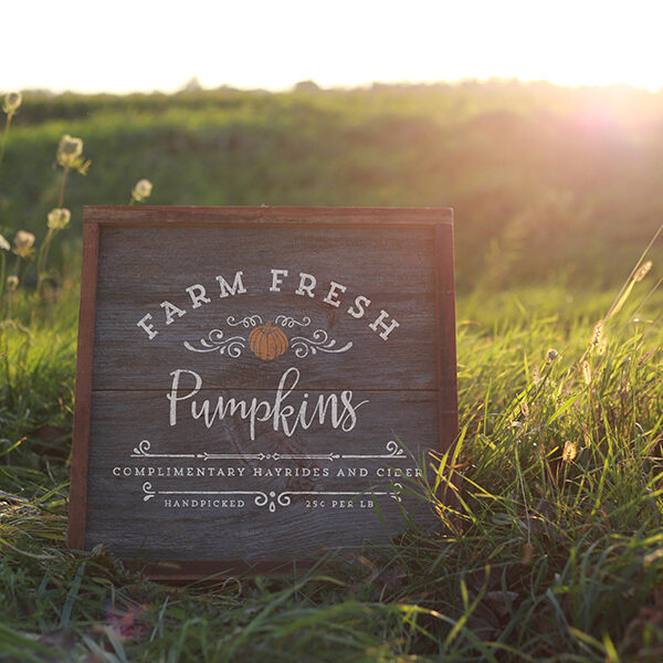 Farm Fresh Pumpkins Design from MountainModernLife.com