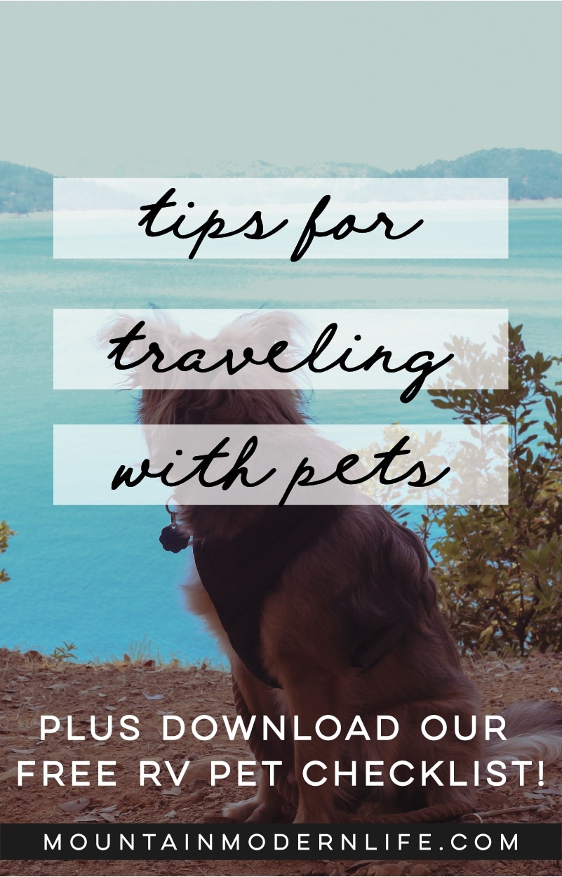 Tips for Traveling with Pets + Printable RV Pet Checklist
