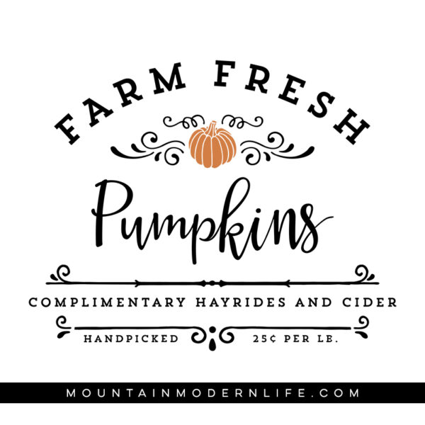 Farm Fresh Pumpkins SVG