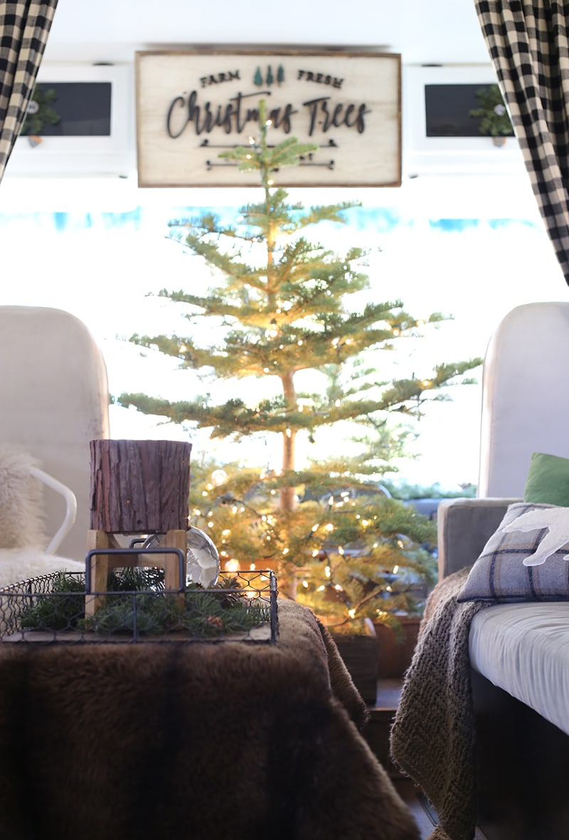 Christmas tree cut from the forest inside RV