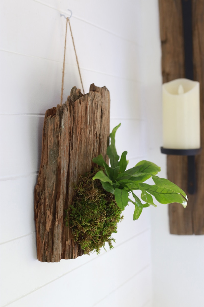 See how easy it is to make wall mounted plants on cork bark flats or driftwood! These are perfect for tiny living, purifying the air, or to keep away from nibbling pets! MountainModernLife.com