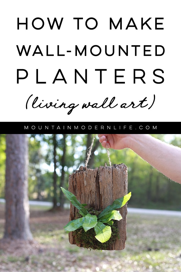 See how easy it is to make wall mounted plants on cork bark flats or driftwood! These are perfect for tiny living, purifying the air, or to keep out of reach from nibbling pets! #plants