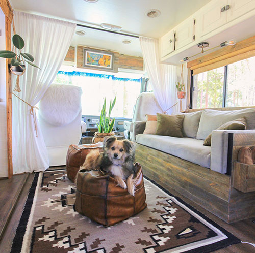 how-to-combat-pet-fur-in-rv-mountainmodernlife.com-500×498