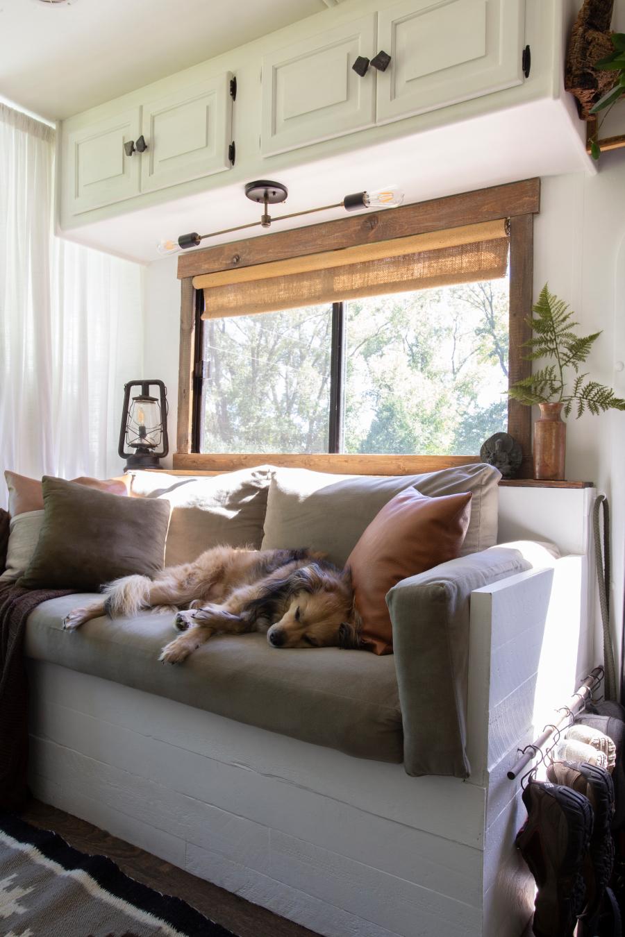 dog sleeping on sofa in RV