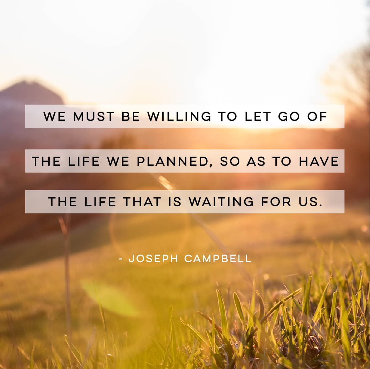 """We must be willing to let go of the life we planned, so as to have the life that is waiting for us. "" Joseph Campbell Quote"